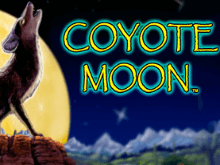 Азартные игры в автомате Coyote Moon